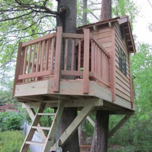 Ashton Maryland Treehouse Tree Houses By Tree Top Builders