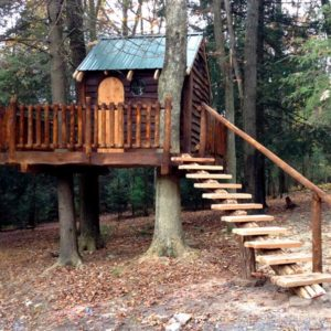 A11-Custom-Treehouse