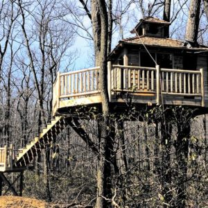 A15-Custom-Treehouse