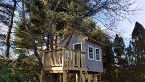 BA Treehouse with Tree Through Deck