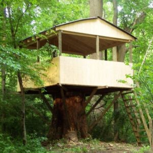 Delaware Basic Treehouse Tree Houses By Tree Top Builders