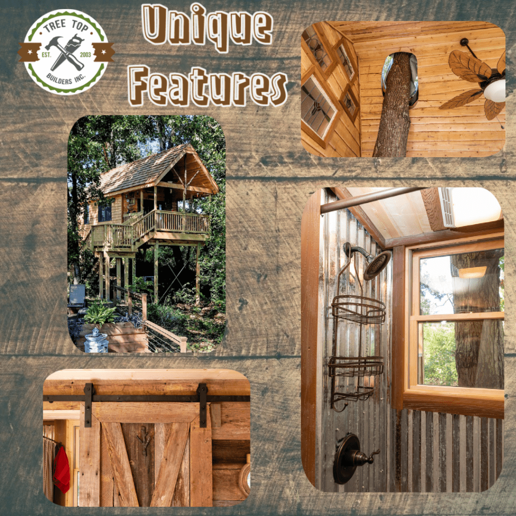 Unique Features of Treehouse Rentals