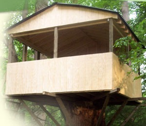 Simple Tree House Plans For Kids designing simple / basic tree houses | simple kids tree houses