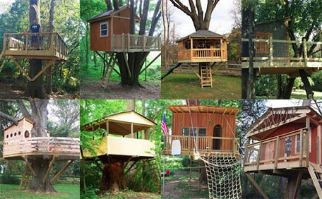Gallery of tree house pictures projects and options for Houses images pictures