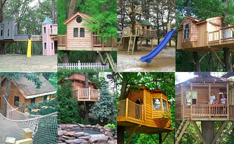 Treehouse Masters Tree Houses Inside gallery of tree house pictures, projects and options | portfolio