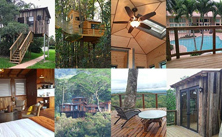 For Luxury Accommodations Or Tiny Home Living, These Treehouses Are Larger,  Have Bathrooms And Kitchens, And Are Often Booked Solid 6 9 Months In  Advance.