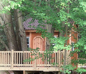 Tree Houses And Building Permits Construction Of Tree Houses